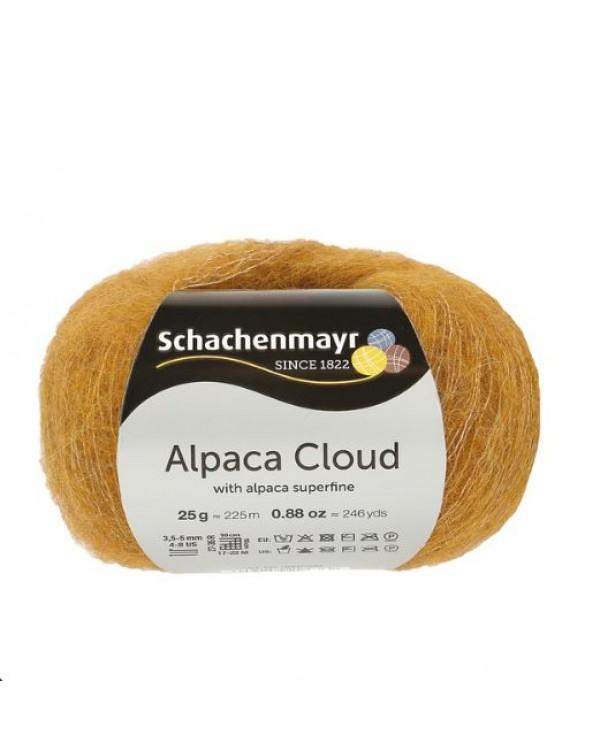 Alpaca Cloud
