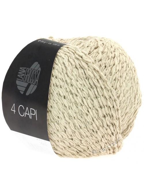 4 CAPI